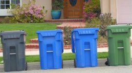 How to Get Rid of Bugs in Recycling Containers