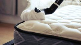 How to Clean Carpet with Bed Bugs