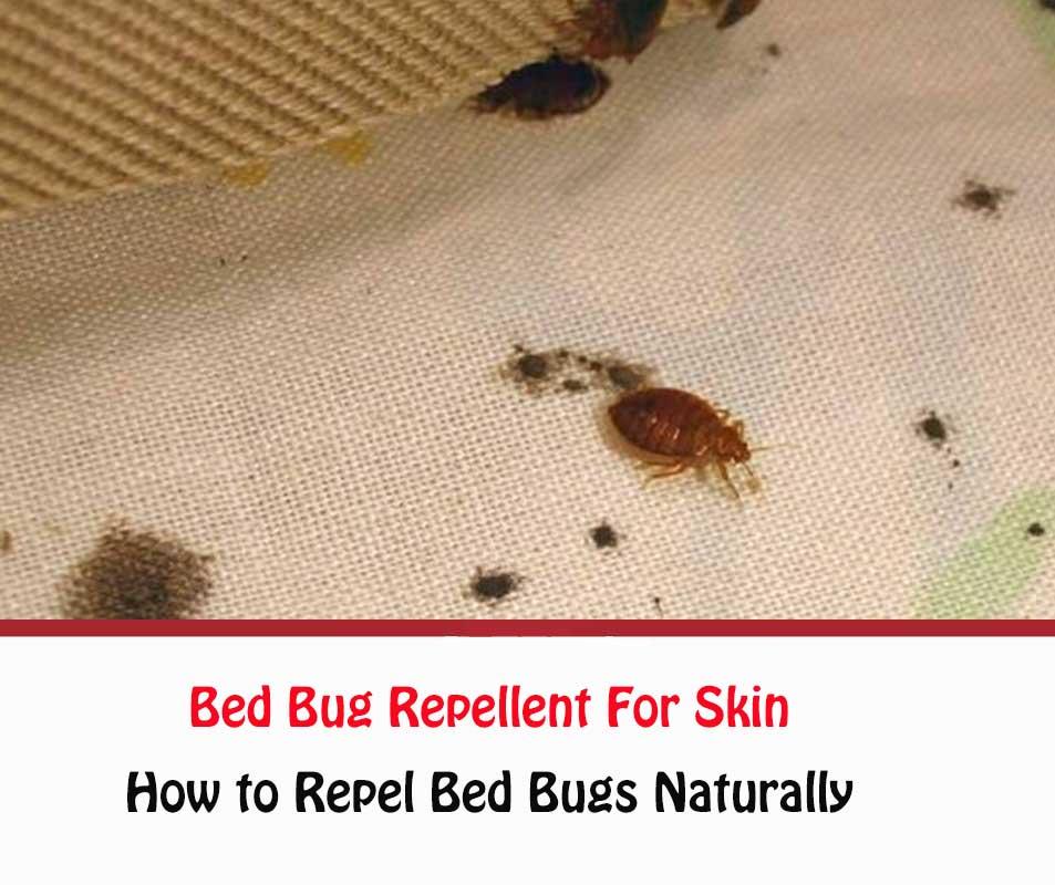 Bed Bug Repellent For Skin