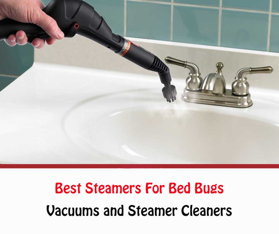 Best Steamer For Bed Bugs
