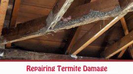How To Repair Termite Damage?