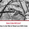 Does Coke Kill Lice?