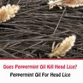 Does Peppermint Oil Kill Head Lice?