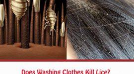Does Washing Clothes Kill Lice?