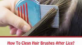 How To Clean Hair Brushes After Lice?
