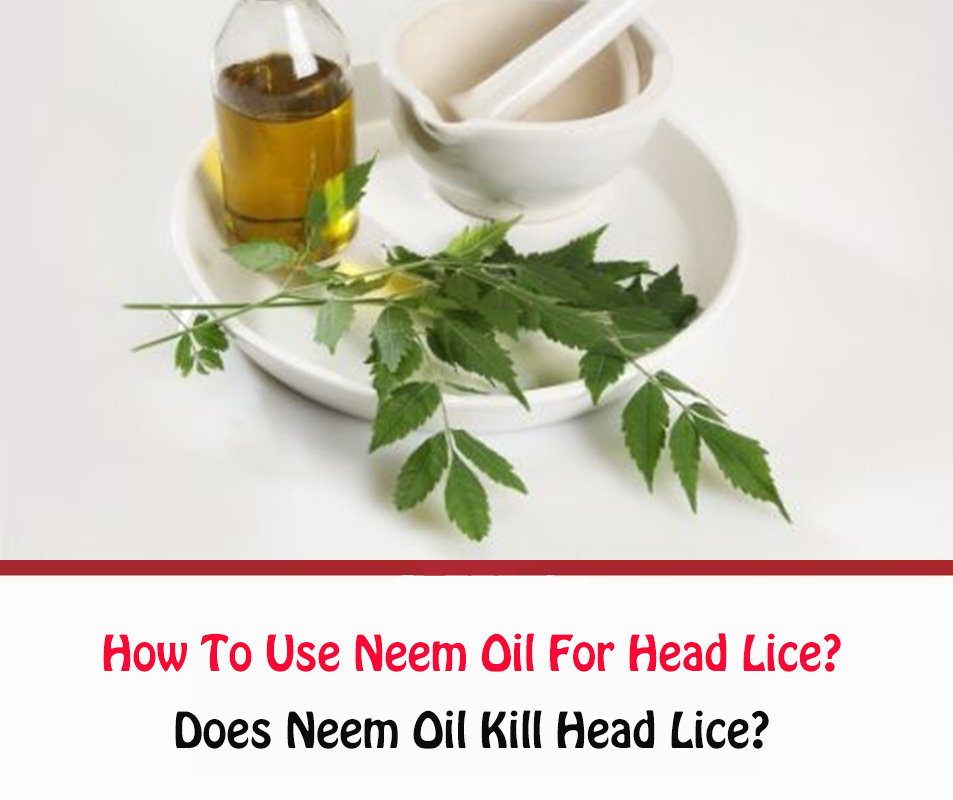 How To Use Neem Oil For Head Lice?