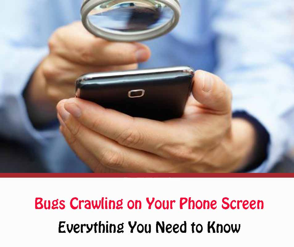 How to Get Rid of Bugs Crawling on Your Phone Screen
