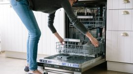 How To Get Rid Of Ants In The Dishwasher