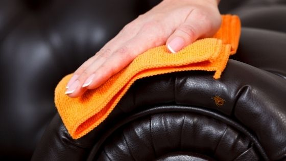 Will Bed Bugs Live In Leather Furniture - Image By pestideas