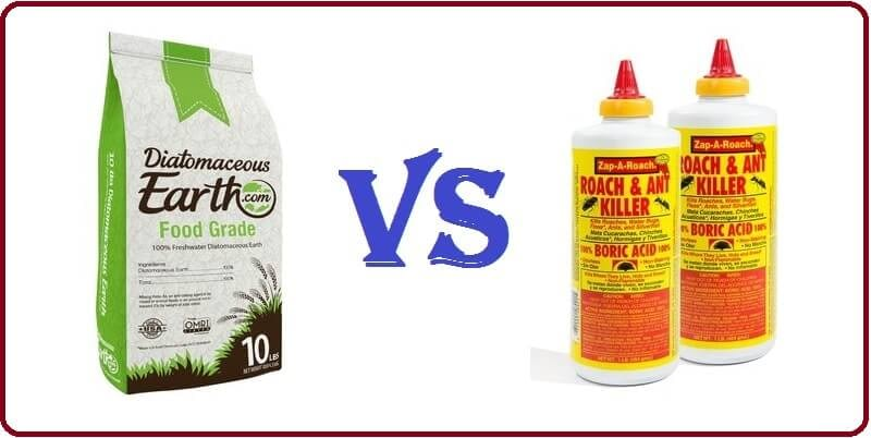 Diatomaceous Earth Vs Boric Acid On Roaches