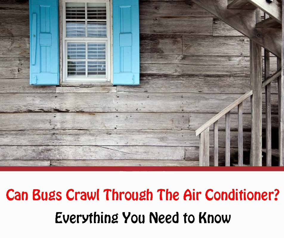 Can Bugs Crawl Through The Air Conditioner