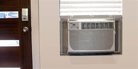What Damage Can Roaches Do In AC units?