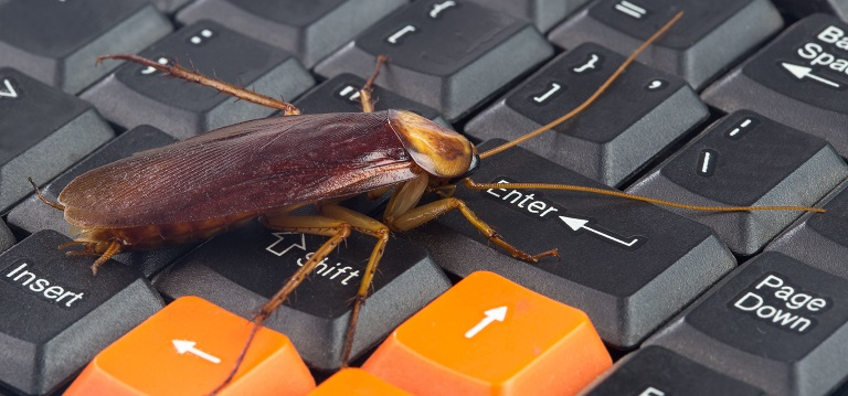 Damage that Caused by Roaches for Your Electronics