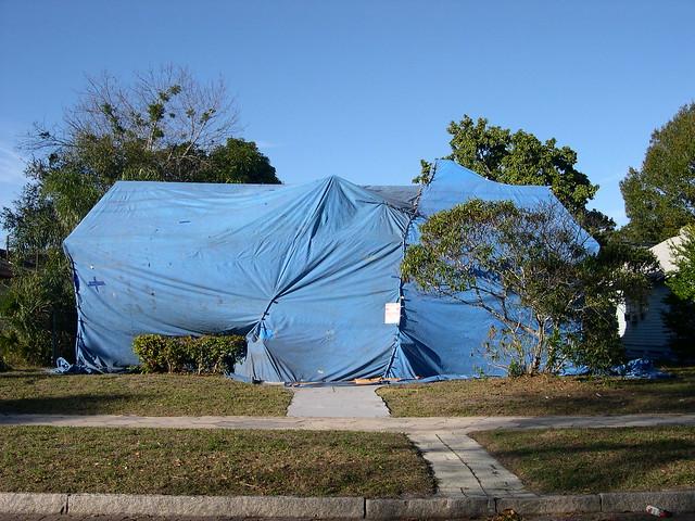Dangers of Termite Tenting