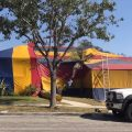 Termite Tenting Dangers: Is It Really Safe For Human?