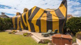 Termite Fumigation Health Risks