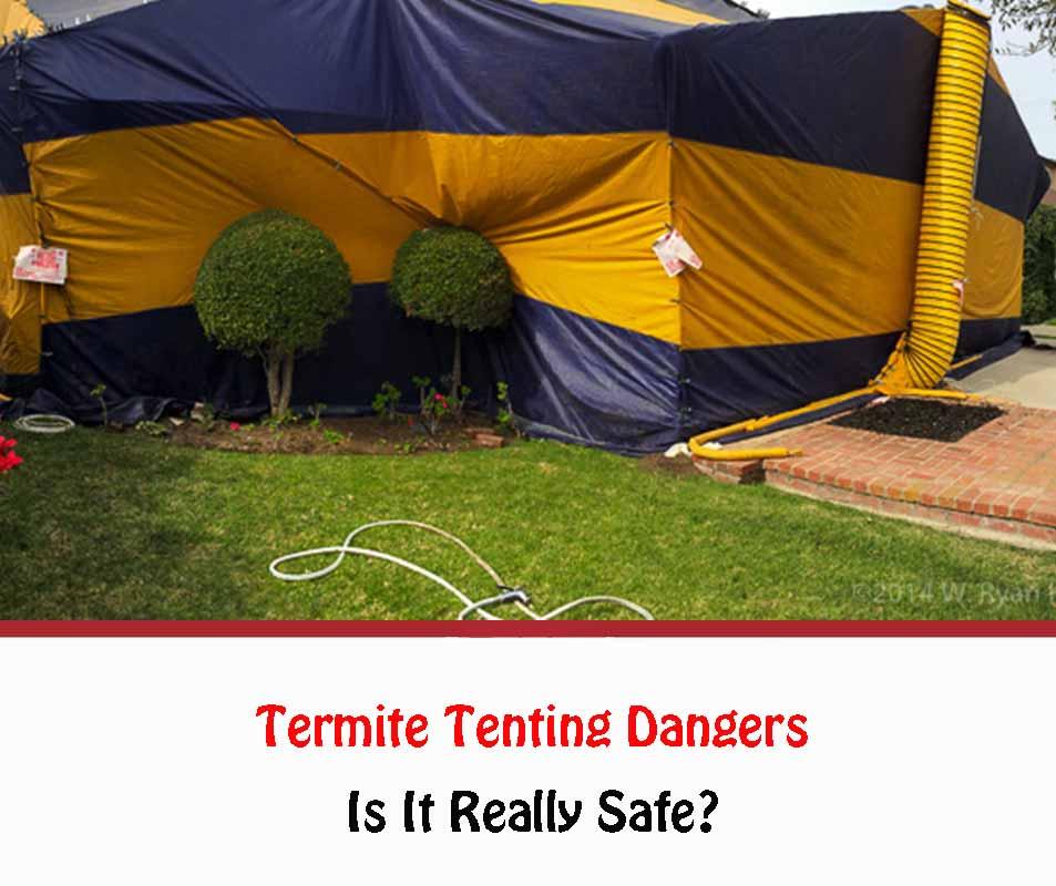 Termite Tenting Dangers