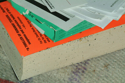 How to Get Rid of Bed Bugs in Books Naturally