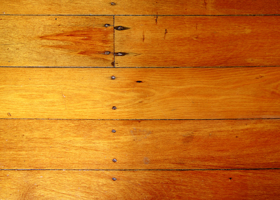 Signs of Bed Bugs on Wood